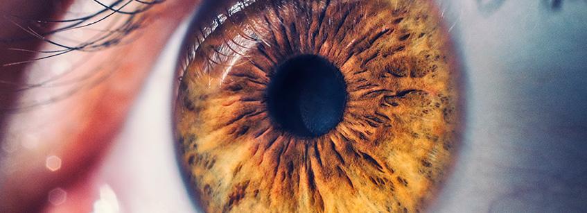enfermedades, ojos, pupila, salud