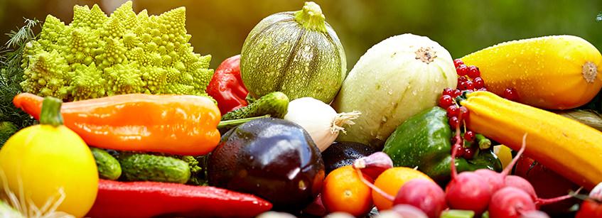 alimentación sana, alimentación y nutrición, comida saludable para niños
