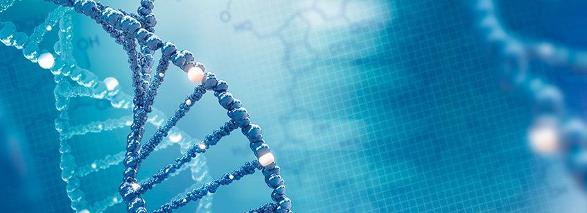 test genéticos, adn, análisis sangre