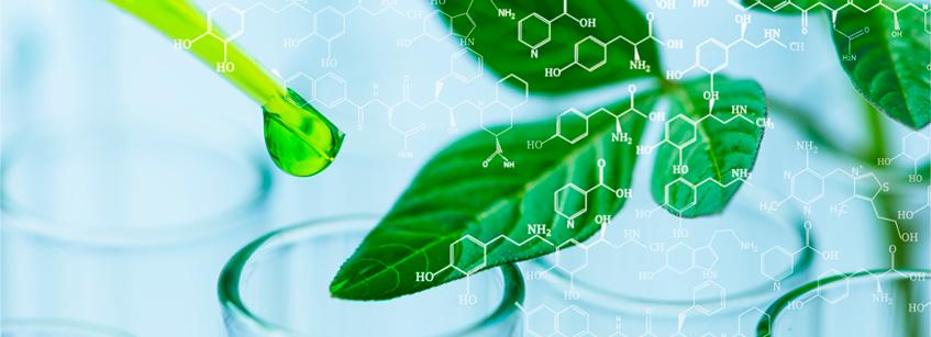 Bioquímica y Bioproductos