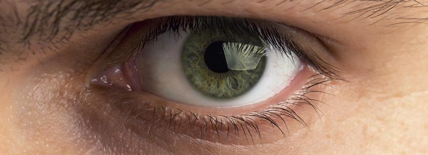 Curiosidades ojos